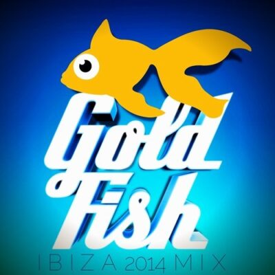 Goldfish South Africa Tour
