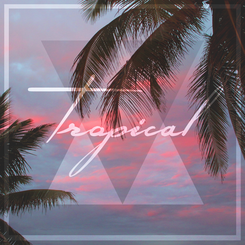 Tropical house track 39 take me 39 by tom enzy takes you to for House music tracks
