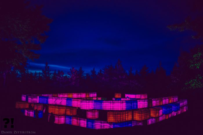 The Groove Qube Illuminates the Forest @ WTF