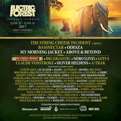 Electric Forest (Weekend 1) @ Double JJ Resort | Montague | Michigan | United States