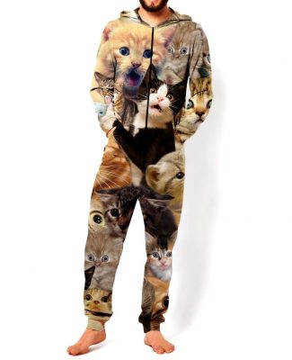 Click here to buy Cat Onesie: This is what you wear to make friends.
