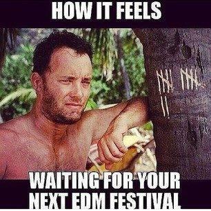 castaway meme hilarious memes that capture the essence of edm,Festival Memes