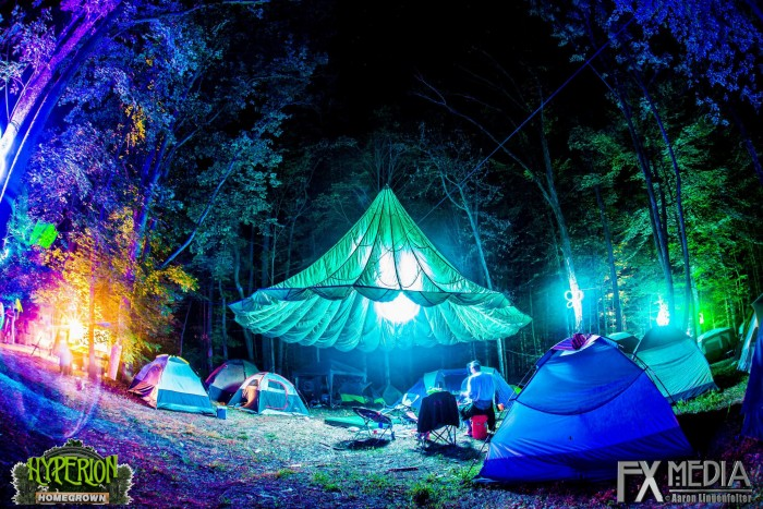 15 Music Festival Hacks to Help You C& Like a Pro & Music Festival Hacks to Help You Camp Like a Pro